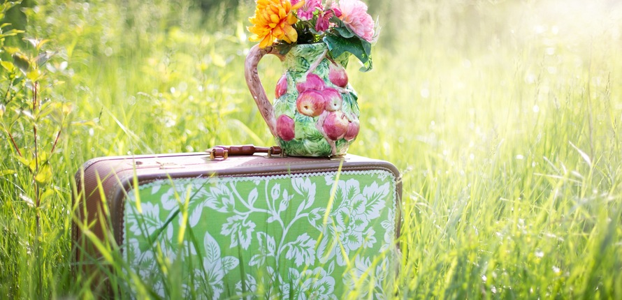 summer-still-life-suitcase-in-field-grass-summer